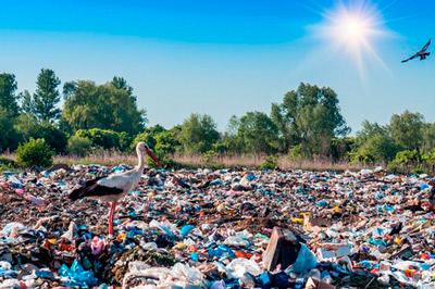 Coca-Cola, Nestlé, Unilever y un total de 250 compañías alimentarias se comprometen a acabar con los envases plásticos para 2025